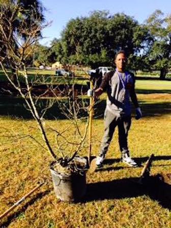 2016_01_16 tree planting_2.jpg