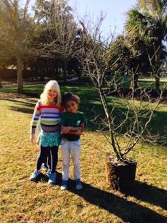 2016_01_16 tree planting_6.jpg